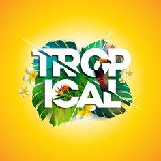 Buy Vector Tropical Holiday Typographic Illustration by articular on GraphicRiver. Vector Tropical Holiday typographic illustration with Toucan bird, exotic leaf and flower on sun yellow background. Beach Background Images, Yellow Background, Vector Design, Logo Design, Graphic Design, Summer Design, Background Templates, Prints For Sale, Brochure Template