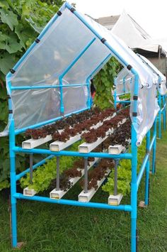 Hydroponic Gardening Best Hydroponic Garden Ideas 220 - Simply observed from the origin he said Hydroponics cultivation means a method of cultivating plants without using soil media, but utilizing water / nutritional mineral solution needed by plants an… Hydroponic Farming, Hydroponic Growing, Hydroponics System, Home Hydroponics, Aquaponics Kit, Aquaponics Greenhouse, Aquaponics Plants, Organic Gardening, Gardening Tips