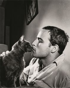 James Dean and Marlon Brando. The real picture is James Dean and Julie Harris. Crazy Cat Lady, Crazy Cats, Celebrities With Cats, Celebs, Men With Cats, Animal Gato, Gatos Cats, Cat People, Free People