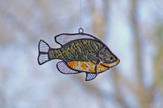 Stained Glass Pumpkin Seed Sunfish-(also bluegill, trouts, bass etc etc so cute)