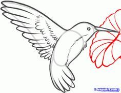 How to Draw a Hummingbird and Flower, Step by Step, Birds, Animals ...