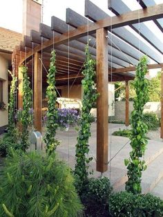 This would be awesome out front. The curve of the pergola could mimic the curve of your steps. You could have cement from the house to the edge of the pergola and plants framing the outside with pots of plants on the patio. Building A Pergola, Wood Pergola, Outdoor Pergola, Backyard Pergola, Pergola Plans, Backyard Landscaping, Pergola Lighting, Curved Pergola, Pergola Shade