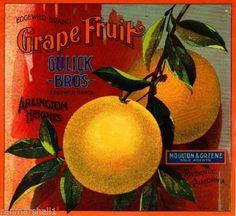 Arlington-Heights-Edgewild-Grapefruit-Citrus-Fruit-Crate-Label-Print