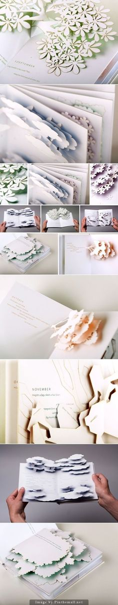 pop up book: