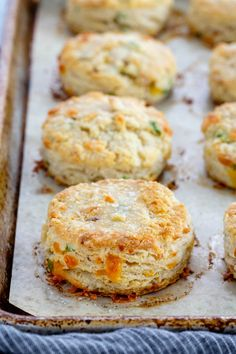 Best Buscuits Ever! Bacon Cheddar Biscuits are savoury and buttery individual-sized quick breads. Perfect to serve alongside any meal! Flakey biscuits hot from the oven are hard to resist especially when they're filled with bacon, cheddar, and green Flakey Biscuits, Savoury Biscuits, Tea Biscuits, Cheddar Biscuits, Cheese Biscuits, Homemade Biscuits, Crumpets, Traditional Bread Recipe, Bread Recipes