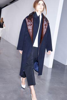 Celine Fall 2012 Ready to Wear