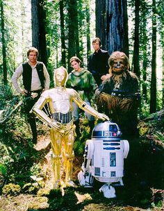 Star Wars In Back Row Hans Solo, Princess Leia, Luke Skywalker, In Front - C3PO, R2D2, and Chewbacca