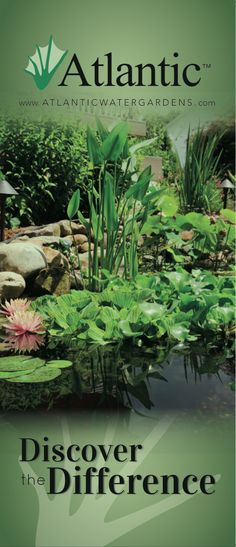 Discover the Difference with Water Feature equipment from Atlantic Water Gardens