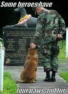 Happy Memorial day, for the fallen marine war dogs. So neat. War Dogs, Love My Dog, Puppy Love, Man With Dog, Military Working Dogs, Military Dogs, Military Service, Military Veterans, Police Dogs