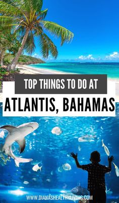 Are you heading to the Bahamas? Here are the top things to do in Atlantis, Bahamas! From the thrilling waterpark to the relaxing spa, there is no shortage of amazing activities on Paradise…  More Atlantis Resort Bahamas, Bahamas Resorts, Travel Destinations Beach, Beach Travel, Venice Travel, Koh Tao, Travel Guides, Travel List, Travel Couple
