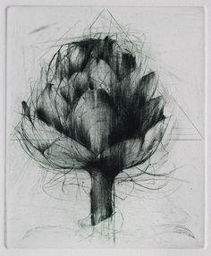 Jake Muirhead, 'Artichoke' etching and drypoint