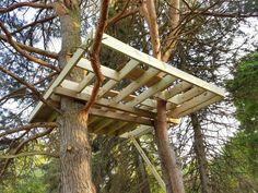 Diy Treehouse Platform Support Frame 10' x 10'