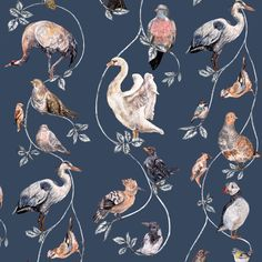 Flights of Fancy Pitch Blue by House Of Hackney : Wallpaper Direct