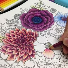 World of Flowers de Johanna Basford - Colored Pencil Artwork, Color Pencil Art, Colored Pencils, Coloring Book Art, Mandala Coloring, Coloring Tips, Adult Coloring, Johanna Basford Secret Garden, Secret Garden Colouring
