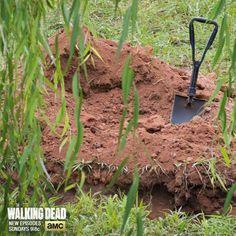 MISS CARLAINA: THE WALKING DEAD: LA TRISTE VUELTA