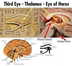 This is what the Egyptians saw...     ~that makes a lot of sense, actually...