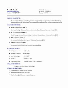 Resume Format For 5 Years Experience In Accounting Resume Format