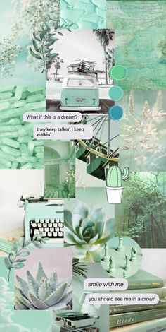 Aesthetic Wallpapers, Iphone Wallpaper, Cactus, Aesthetics, Collage, Birds, Table Decorations, Anime, Movie Posters