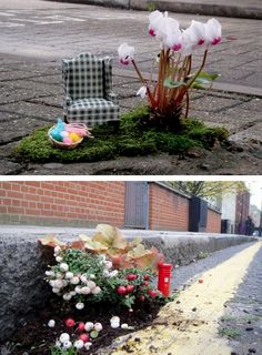 the pothole gardener. Pothole gardening to beautify and draw attention streets in need of repair!  Also a fun way to interact with public space.