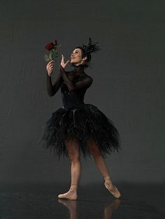 By Royal NZ Ballet Clytie Campbell as Carabosse in The Sleeping Beauty PHOTO Ross Brown
