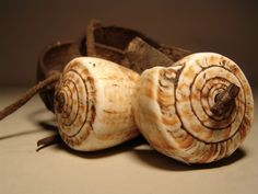 Mwila adornment from Angola: a pair of conch shells on a leather thong