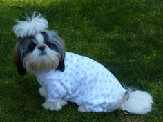 Sophie in her Pullover Cover Me by Tui