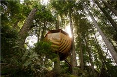 I have always, and will always want to live in a tree-house. Especially one this nice.