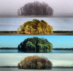 """Photo enthusiast Tyler Casson visited a lake four times over the course of a year and photographed an island from the same spot each time. He calls the project, """"The Four Seasons of the Bush."""" More here: http://www.petapixel.com/2012/12/11/photos-of-an-island-across-four-seasons/"""