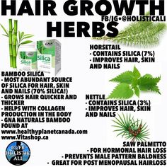 Herbs for hair Healing Herbs, Natural Healing, Natural Oils, Natural Medicine, Herbal Medicine, Health Facts, Health And Nutrition, Health And Beauty Tips, Health Tips
