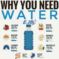 👉 For More Healthy Tips And Tricks 😍💪💦 . Do you drink enough water? Water is so important and you can see why! Tag someone who needs to stay more on top of this! 👉 For More Healthy Tips And Tricks 😍💪💦 . Easy Weight Loss, Weight Loss Journey, Weight Loss Water, Healthy Tips, How To Stay Healthy, Healthy Weight, Eating Healthy, Healthy Snacks, Biceps