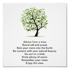Pick your perfect Tree wedding program with Zazzle. Wall Decals Canvas, Wall Text, Tree Of Life Art, Tree Quotes, Drink Plenty Of Water, Feel Good Stories, Media Quotes, Religious Pictures, Tree Wedding