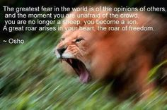 A great roars arises in your heart.  A roar of freedom.  Osho Rajneesh Thanks Dr. Nina V for sharing this.  LION