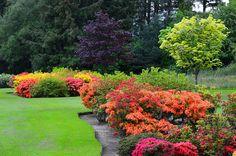 Latinoamericanos o europeos, ¿quién tiene los jardines más grandes?
