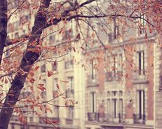 {travel inspiration : autumn in paris} by {this is glamorous}, via Flickr