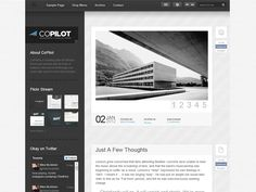 CoPilot template for your blog Quickly and easily publish your images, videos, galleries, quotes, links and more. Did I mention the sweet jQuery sorting