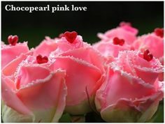 #Rose #ChocoPearl Pink Love; Available at www.barendsen.nl