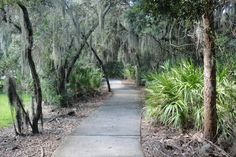 Path Way to Nature  #fishhawkhomesforsale