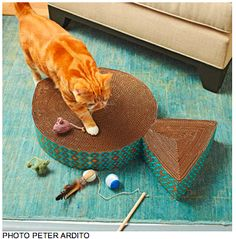 DIY tutorial for making corrugated cat scratching toys. Love that idea - I can recycle some cardboard boxes I have in the garage and make my cats happy (and keep them happy for longer), all while saving the cost of having to buy refills. Win-win all the way around.