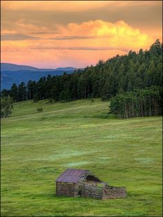 Evergreen, Colorado....hiked Elk Meadow frequently when I lived here.