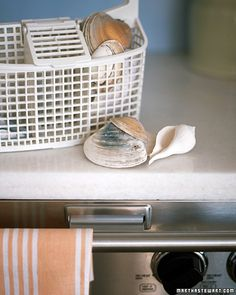 Washing Shells ----    Like a swimmer at the beach, seashells need a good shower before they're ready for the house, or for use in your favorite craft. Getting all the grit out of the shells by hand is a challenge; instead, slip them into the utensil basket of the dishwasher, and run them through a cycle. They'll be clean and ready for display when they come out.