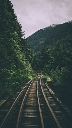 Rails #naturephotography Cute Wallpapers, Wallpapers For Android, Beautiful Wallpapers For Iphone, Best Iphone Wallpapers, Train Wallpaper, Forest Wallpaper Iphone, Iphone Wallpaper Green, Green Nature Wallpaper, Iphone Wallpaper Travel