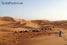 Una notte indimenticabile nel deserto del Sahara!