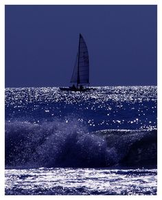 On the sailing boat Tirrenia, Tuscany, Italy Copyright: Freddy Adams
