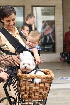 cute overload. Humans Of New York