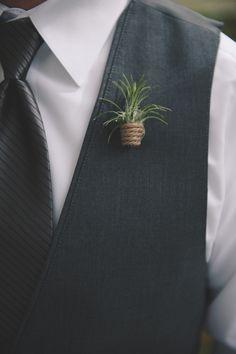 Air plant boutonniere / Bit of Ivory Photography / Fab You Bliss