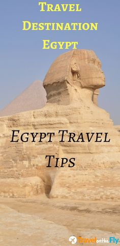 Travel Destination Egypt - Egypt Travel Tips! Europe Travel Tips, Travel Destinations, Places In Egypt, Europe Continent, Travel Humor, Funny Travel, Travel Tags, Visit Egypt, Egypt Travel