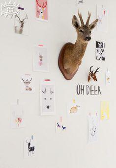 la casa de cotó : [ t e n d e n c i a ] . . . ciervos