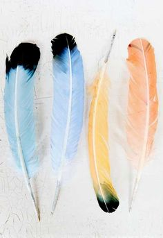 DIY project: feather pen pal stationery kit (tutorial by Halligan for Design*Sponge) Watercolor Feather, Feather Painting, Feather Art, Feather Pens, Feather Earrings, Diy Earrings, Watercolour Painting, Watercolors, Objet Harry Potter