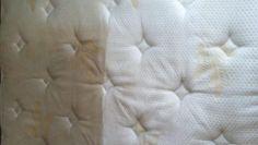 Plíseň na okurkách a rajčatech zlikviduje na počkání: Tento jednoduchý domácí postřik funguje stejně, jako drahé fungicidy! – Domaci Tipy Merino Wool Blanket, Throw Pillows, Bed, Cushions, Stream Bed, Decorative Pillows, Decor Pillows, Beds, Scatter Cushions