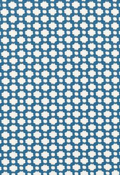 Fabric | Betwixt in Water/Natural | Schumacher- this will never get old!